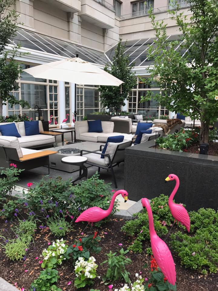 weekend happenings, the fairmont hotel dc